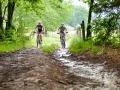 Mountainbikeroute Lierneux