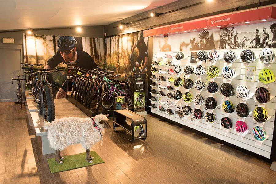 Trek Bicycle Store Brugge